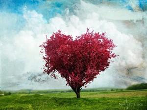 arbre-coeur